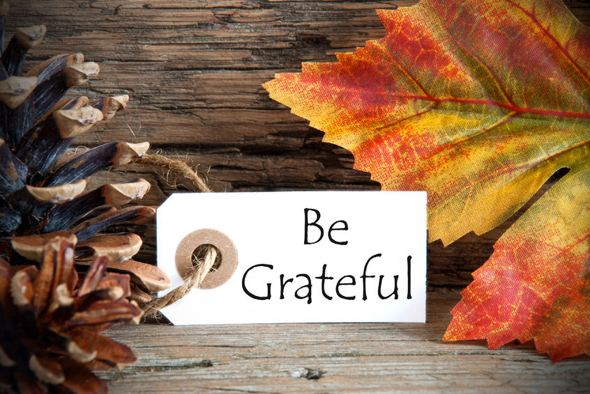 Taking a Moment for Gratitude